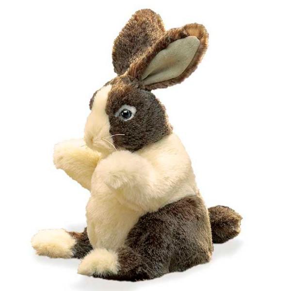 """Baby Hase """"Dutch"""" / Baby Dutch Rabbit"""