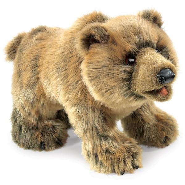 Grizzlybär / Grizzly Bear