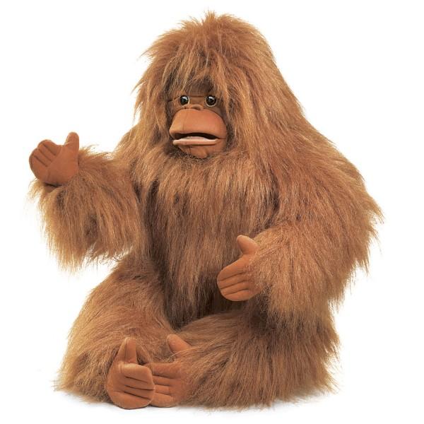 Orangutan / Orangutan