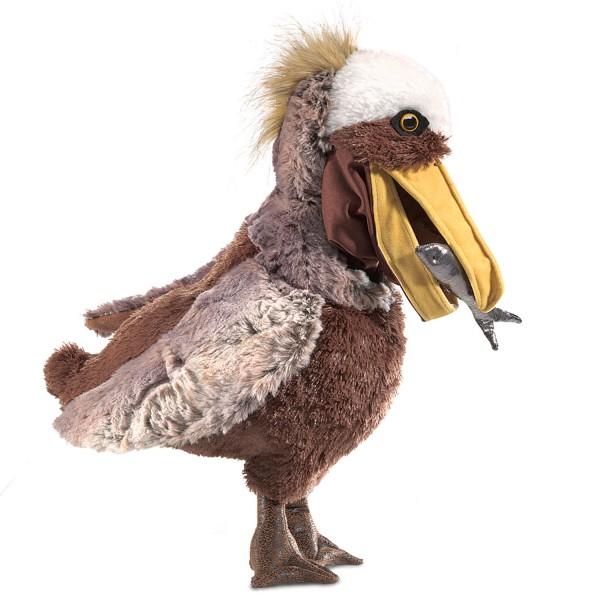 Pelikan / Pelican