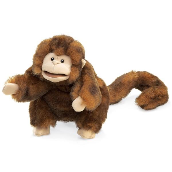 Braunes Äffchen / Monkey