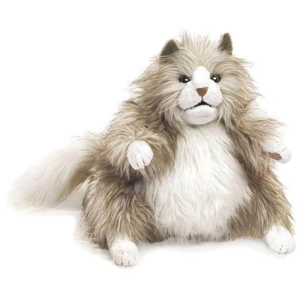 Pummelige Katze / Fluffy Cat