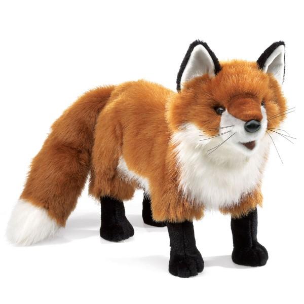 Rotfuchs / Red Fox
