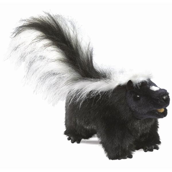 Stinktier / Skunk