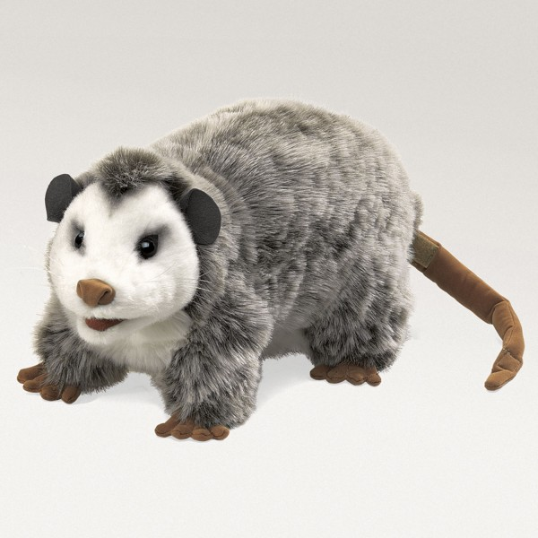 Opossum / Opossum